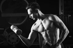 Strong Muscular man with naked torso abs working out in gym doing exercises with dumbell at biceps.  Royalty Free Stock Image