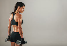 Strong muscular young woman holding dumbbells Royalty Free Stock Photography