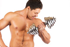 Strong muscullar man holding chromed dumbbell Stock Photography