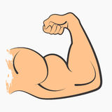 Strong power muscle. Arms biceps vector icon Royalty Free Stock Photography