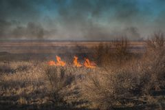 Strong prairie fire with large clouds of choking smoke erupted in southern steppe. Stock Photo