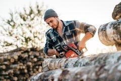 Strong professional lumberman use chainsaw on sawmill. Lumberjack sawing big tree stock photos