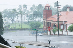 Strong rain gusts from Cyclone Ita on The Strand, Townsville Royalty Free Stock Photo