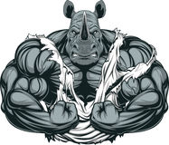 Strong rhinoceros athlete. Vector illustration of a strong rhino with big biceps Stock Photos