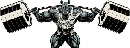 Strong rhinoceros athlete. Vector illustration, symbol of a strong bodybuilder rhinoceros squats with a barbell on a white backgroundn Stock Images