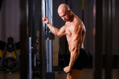 Strong ripped bald man bodybuilder working out with equipment in stock image
