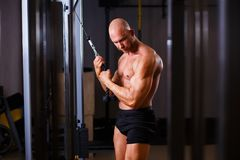 Strong ripped bald man pumping iron. Bodybuilder posing with equ stock photography