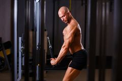 Strong ripped bald man pumping iron. Bodybuilder working out wit stock images