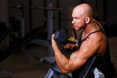 Strong ripped bald man pumping iron. Sports man working out with stock photography