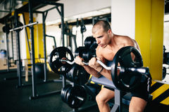Strong ripped man training in gym. Strong ripped man training bicepses in gym royalty free stock image