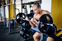 Strong ripped man training in gym Royalty Free Stock Photography