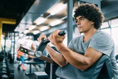 Strong ripped man training in modern gym. Strong ripped men training bicepses in gym royalty free stock photography