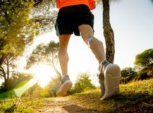 Strong runner training on rural track jogging at sunset in nature in cross country and sports. Back view of sport man with ripped athletic and muscular legs stock image