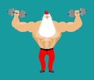 Strong Santa Claus with dumbbell. Fitness man. Bodybuilder Chris Stock Photos