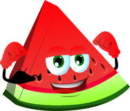 Strong slice of watermelon Stock Images