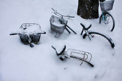 Strong snow covered the bicycle Stock Photos