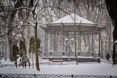 Strong snow storm in the city park Stock Photo