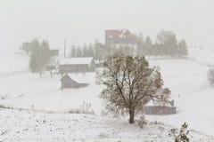 Strong snowfall Royalty Free Stock Photos