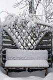 Strong snowfall Stock Photography