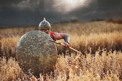 Strong Spartan warrior in battle dress with a shield and a spear. Attack Shot of an armored Roman legionary warrior covering himself with a shield ready to Royalty Free Stock Photos