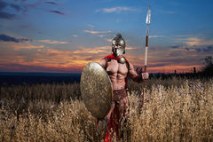 Strong Spartan warrior in battle dress with a shield and a spear stock photos