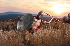 Strong Spartan warrior in battle dress with a shield and a spear royalty free stock photos
