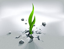 Strong sprout, pushing out. Through stone ground strength concept idea illustration Royalty Free Stock Image