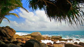 Strong surf on the rocks. Powerful waves breaking on the rough granite boulders under palm trees. FullHD 1080p stock video footage