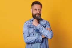 Strong thoughtful blue eyed man looking directly at camera, posing isolated over bright yellow background in studio, touching his. Beard with fingers, having royalty free stock photo
