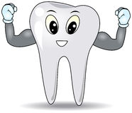 Strong Tooth Royalty Free Stock Photography