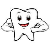 Strong tooth cartoon Stock Photography