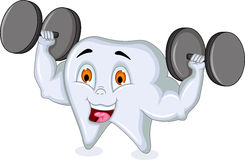 Strong tooth character. Illustration of Strong tooth character Stock Image