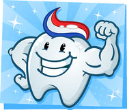 Strong Tooth Flexing Muscles Cartoon Character. A powerful strong molar cartoon character flexing his bulging muscles and showing off his tooth paste hairdo Royalty Free Stock Photography