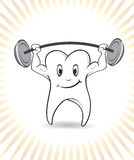 Strong tooth Stock Photo