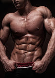 Strong torso Stock Photography