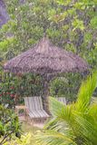 Strong tropical rain in the Seychelles Royalty Free Stock Images