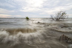 Strong wave at Pantai Jeram, Selangor. Stock Photography