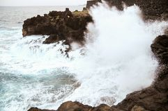 Strong Waves Royalty Free Stock Photography