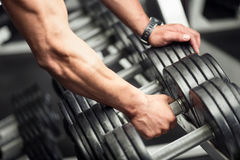 Strong well built bodybuilder lifting a dumbbell Stock Image