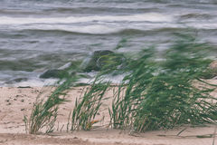 Strong wind on the sea Royalty Free Stock Images