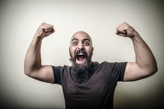Strong winner bearded man Stock Photography
