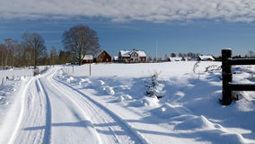 Strong winter in Sweden Royalty Free Stock Photos