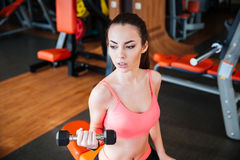 Strong woman athlete training using dumbbells in gym Royalty Free Stock Image
