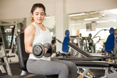 Strong woman lifting dumbbells at the gym Royalty Free Stock Image
