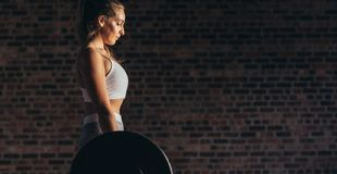 Strong woman lifting heavy weights at gym. Strong young woman lifting heavy weights at gym. Side view of fit young female in sportswear doing heavy weight stock photography