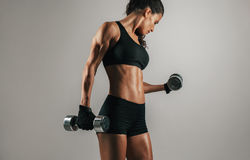 Strong woman lifting weights over gray background. Single strong woman lifting chrome finish dumbbell weights over gray background with copy space royalty free stock photography