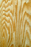 Strong wood grain. Background texture of strong wood grain Stock Image