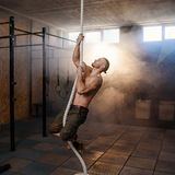 Strong young crossfitter climbing on the rope during training. stock photo