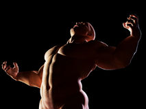Strongman, hero showing his muscular body. Winner. Royalty Free Stock Image