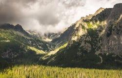 Stronniczo Nasłoneczniona dolina i szczyty obraz stock